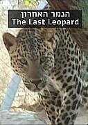 Watch Full Movie - הנמר האחרון - לצפיה בטריילר