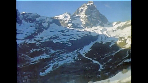 Watch Full Movie - משפחת החיות שלי - קרח - לצפיה בטריילר